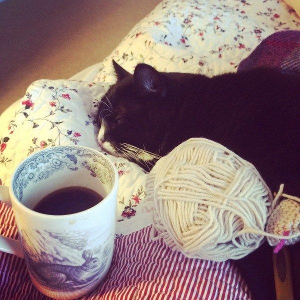 stanley - cat-emma-varnam