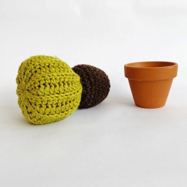 homemade-cactus-emma-varnam